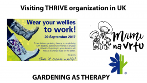 Thrive organization | Wear your wellies to work | Horticultural therapy